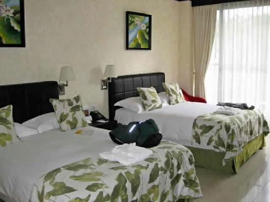 The Royal Corin Thermal Water Spa & Resort: Standard room