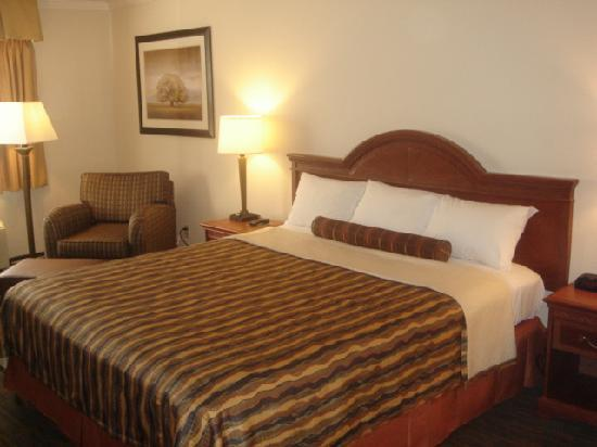 BEST WESTERN PLUS Inn of Hayward: King Deluxe