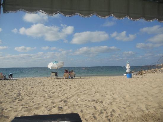 Sheraton Montazah Hotel : The beach
