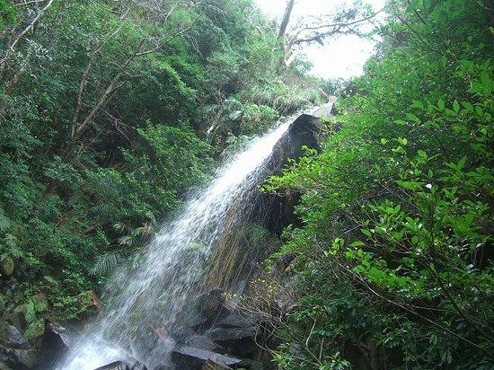 Nago, Japan: 轟の滝