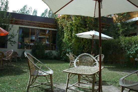 Hotel Pangong: Small Cozy Garden