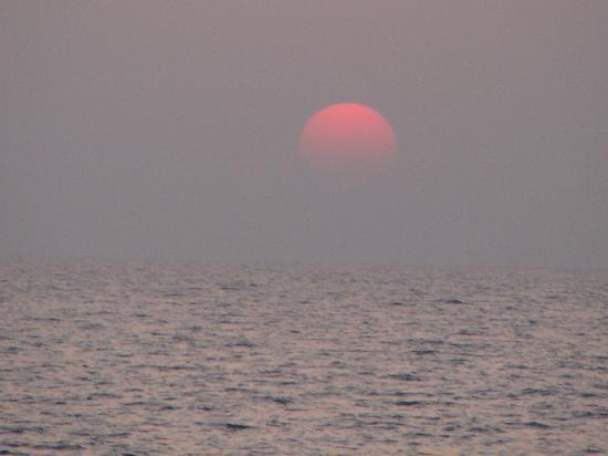 juSTa Turtlebay On Sea, Kundapur Resort : Turtle bay beach