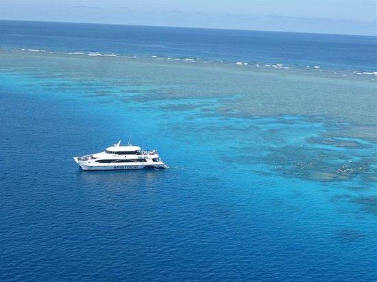ARISTOCAT Snorkel & Scuba
