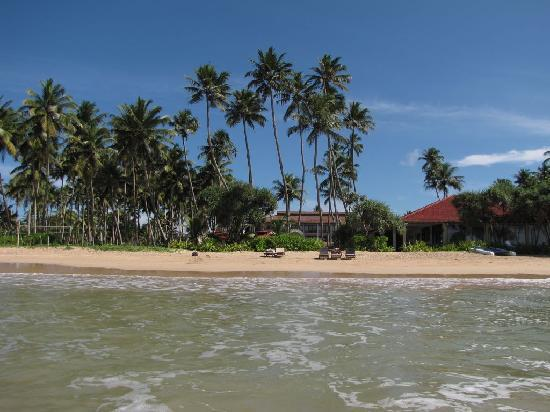 Weligama Bay Resort : From the ocean
