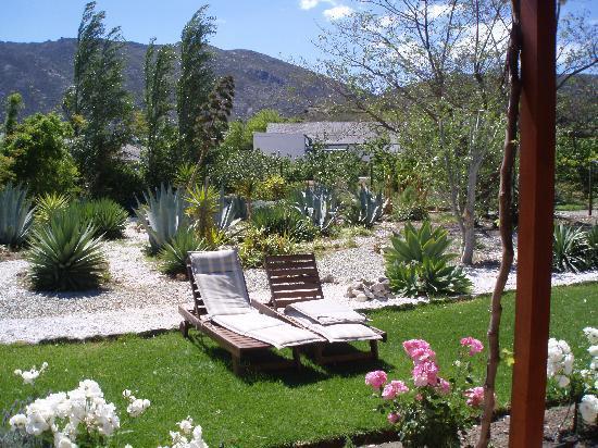 Mimosa Lodge : Schöner Garten mit Sitzgelegenheit