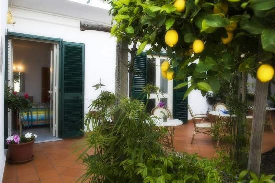 Ravello Rooms: lemon garden
