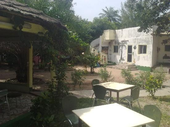 Palm tree decor picture of palm tree bar amp restaurant kololi
