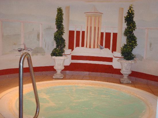 Hotel Schwarzbrunn : Jacuzzi