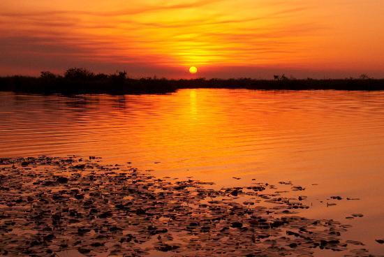 Irupe Lodge: Bootsafari zum Sonnenuntergang