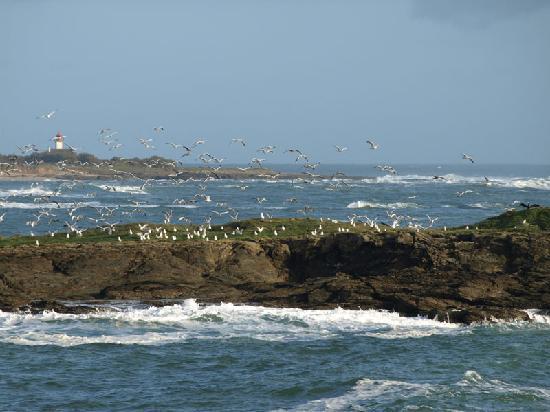 Groix, France: la côte...