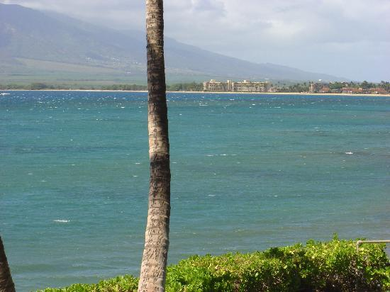 Maui Sugar Beach Inn : nice beaches