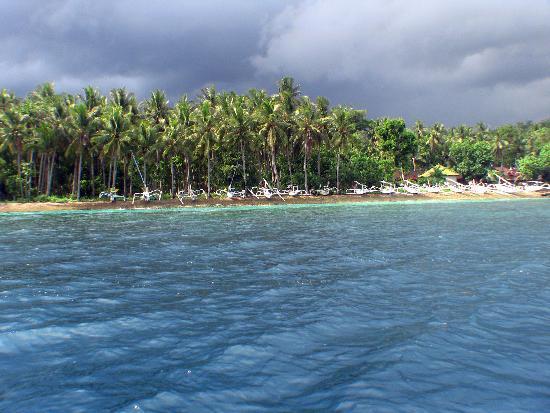 Big Fish Diving: Nusa Penida