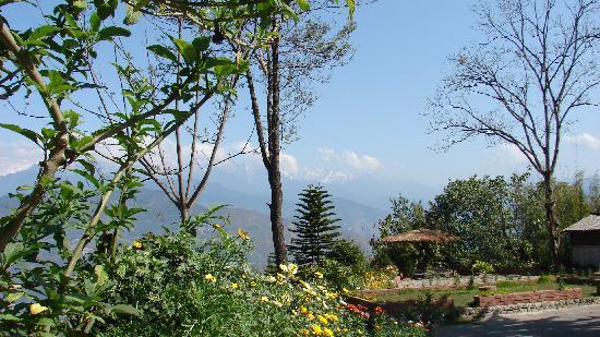 Mandarin Village Resort: View