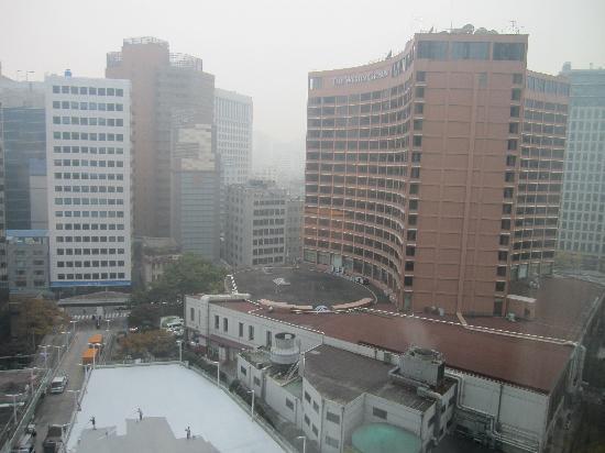 Lotte Hotel Seoul: 窓からの眺め