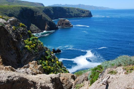 Santa Cruz Island: A view along our island hike.