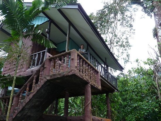 Tree Top River Hut: our house
