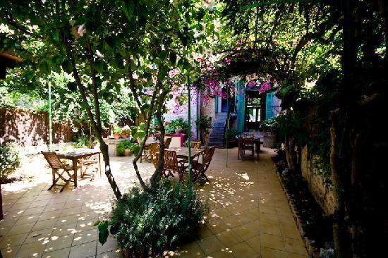 Casa Bougainvillea: courtyard garden