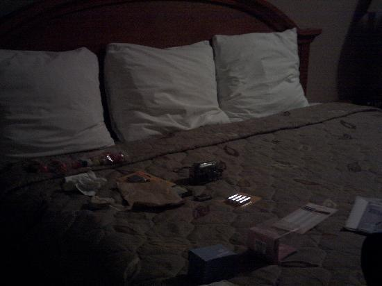 Econo Lodge: kingsize bed