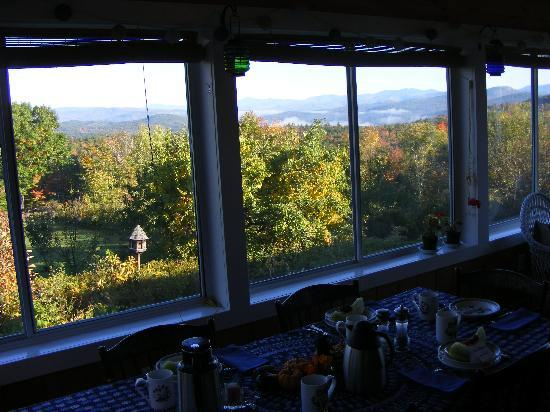 Bridgewater Mountain Bed & Breakfast: View from breakfast area on porch