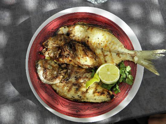 Riad Darko : Bon appétit