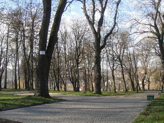 Ternopil, Ukraine : park in Zbarazh
