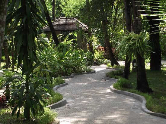 Amata Resort and Spa: Grounds