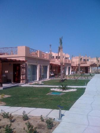 Imperial Shams Resort: Rooms facing the beach