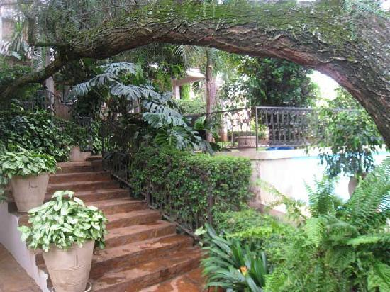 Palacina Residence & Suites: Hotel Grounds