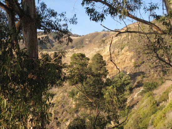 Big Sur Lodge: The scenery is wonderful