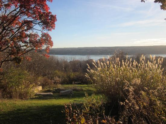 Cayuga Lake Front Inn : View from outside our Courtyard Room