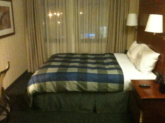 Central Loop Hotel: The smallest room. Comfortable and clean.
