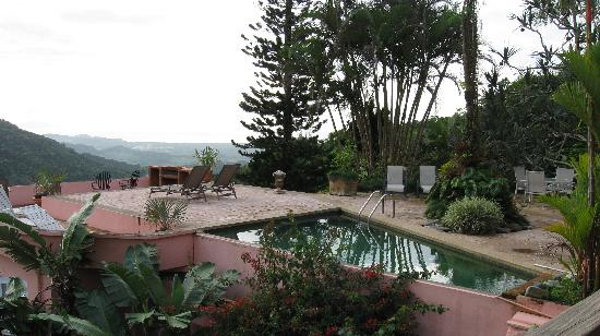 Casa Flamboyant: A view of the pool