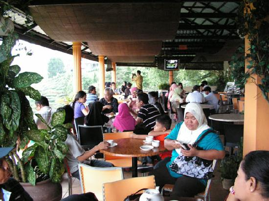 Tanah Rata, Malaysia: The tea house- a nice place for an afternoon tea.