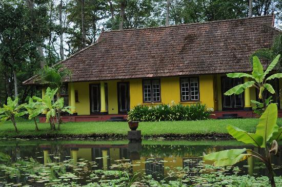 Vivanta by Taj - Kumarakom: cottages with the lotus pond