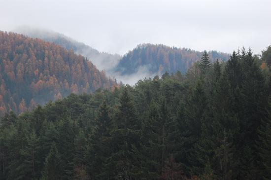 Baselga di Pine, Ιταλία: La vista dalla camera