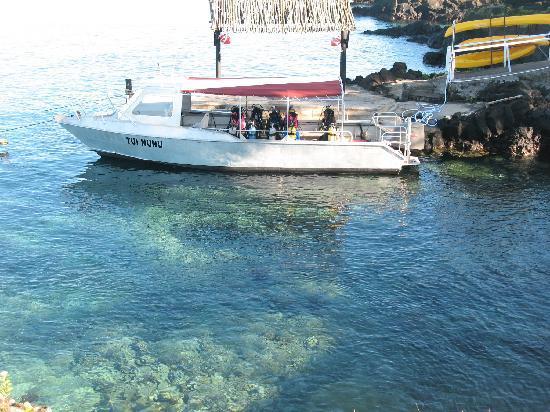 Paradise Taveuni: The ocean at your doorstep