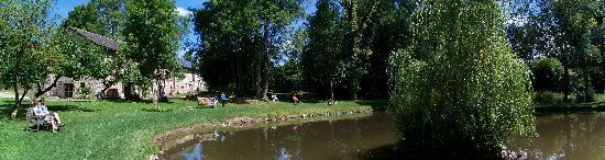 La Ferme des Soleils : Notre bel étang, avec canards, cygnes, oies...