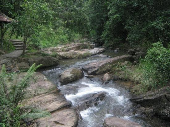 Kandy Samadhi Centre: The stream by the centre