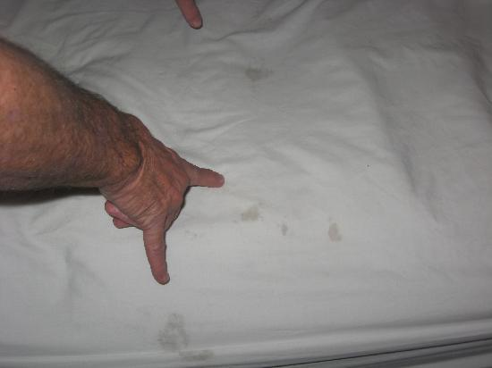 Motel 6 Portland: dirty  sheets