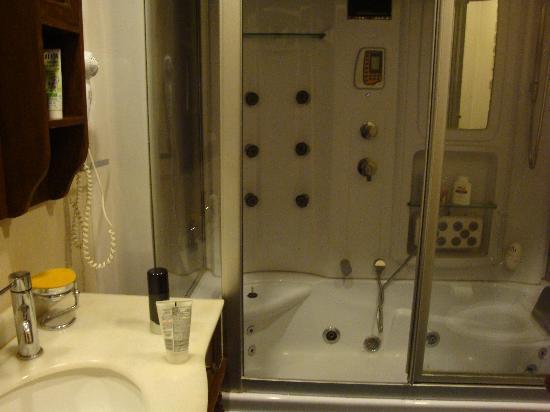 India Luxury Homes: Jaccuzi shower
