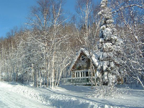 Tadoussac, Canada: Hiver
