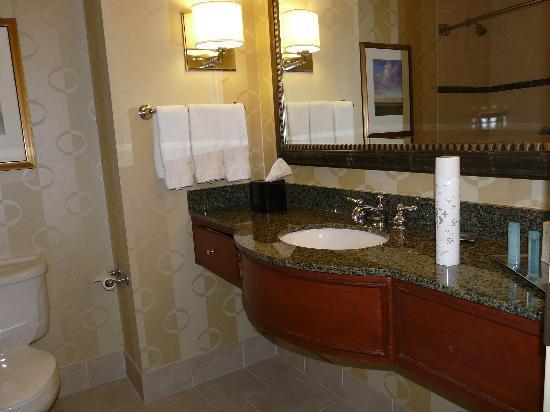 Hilton Omaha : Granite bath