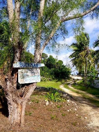 Bahama Villa : The bahamavilla driveway