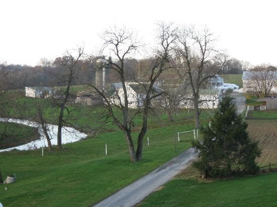 Homestead Lodging : View from room