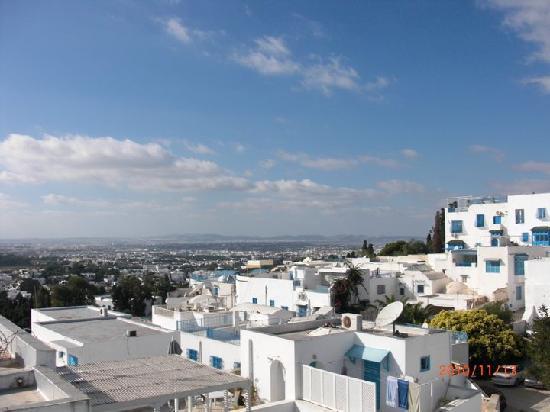 Palais Dar Nejma Ezzahra : View from roof