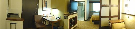 Hyatt Place Portland Airport / Cascade Station: Our room was very spacious.