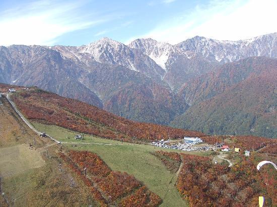 白馬村, 長野県, 八方の紅葉