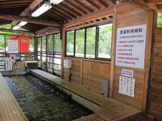 Katashina-mura, Japão: 無料の足湯もあります