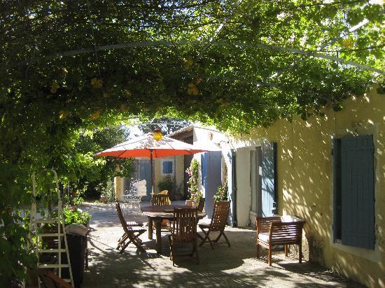 Breakfast under the grapevine at Le Mas de la Menouille