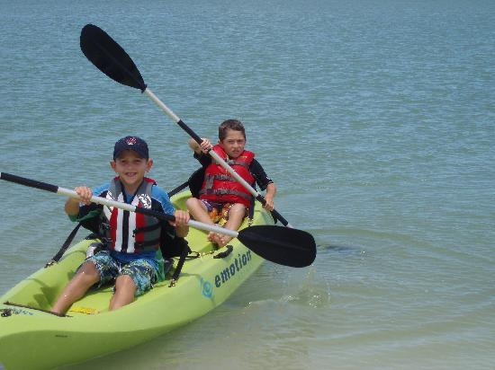 Kayak Tours Marco Island